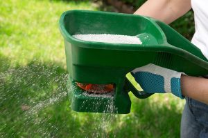 Lawn Care Specialist Fertilizing Lawn