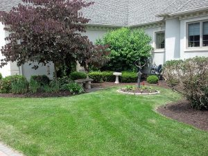 04_Landscaping 3