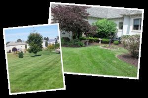 Lawn Care Photos