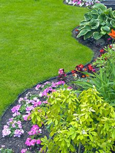 Garden and Lawn Landscaping